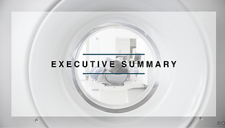 executive summary icon.png
