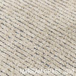 Haven_Marram Grass 3330