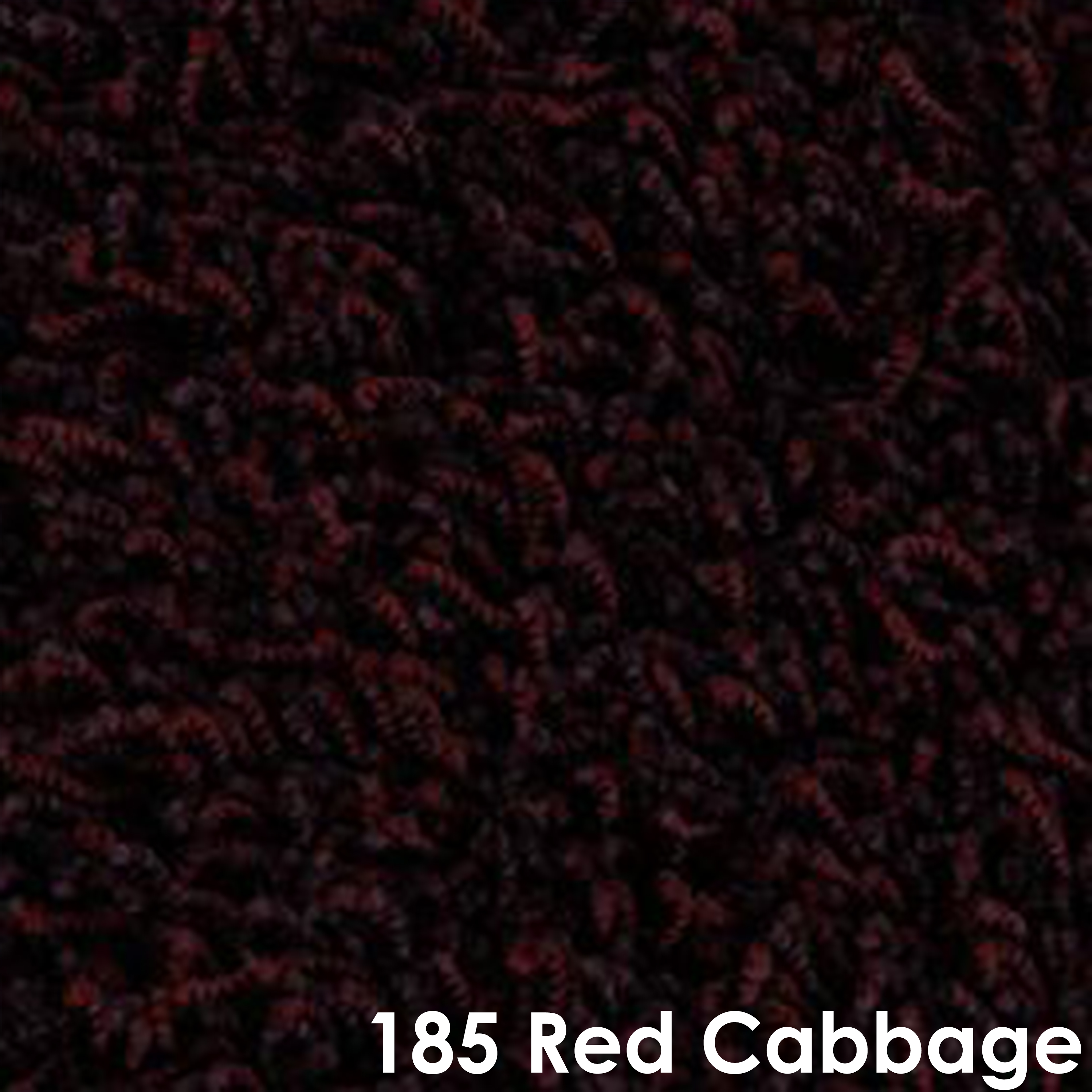 185 Red Cabbage