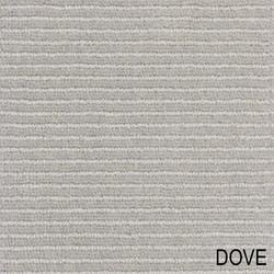 LARA_Dove