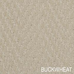 Bistango_Buckwheat