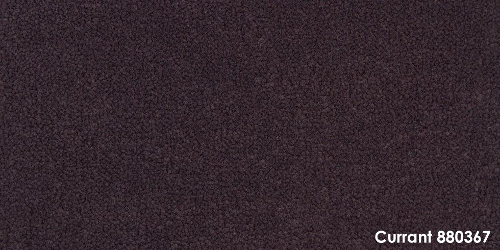Currant 880367