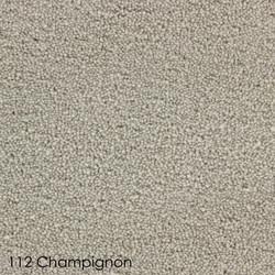 honesty-112-champignon-d