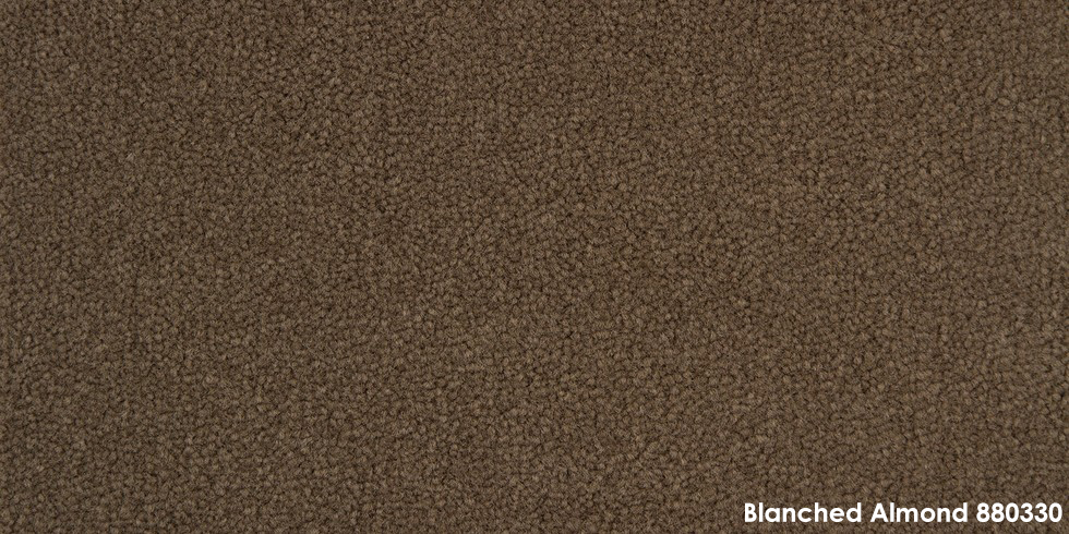 Blanched Almond 880330