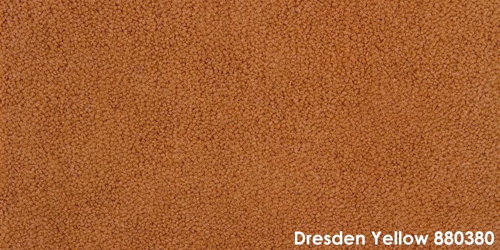 Dresden Yellow 880380