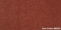 Raw Umber 880360