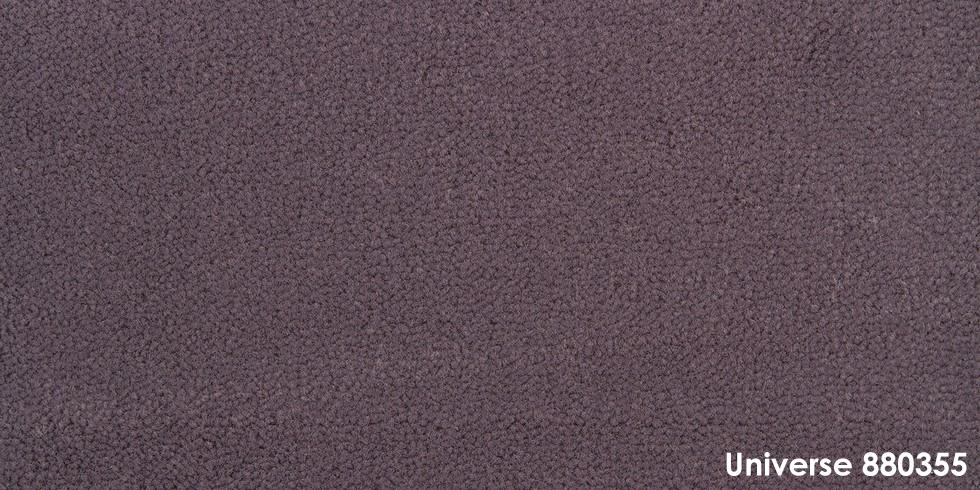 Universe 880355