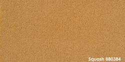 Squash 880384