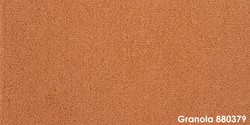 Granola 880379