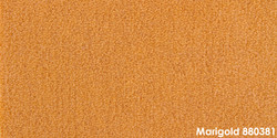 Marigold 880381