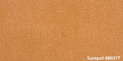 Sunspot 880377