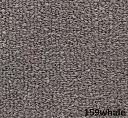 159whale