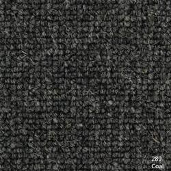 289 Coal_副本