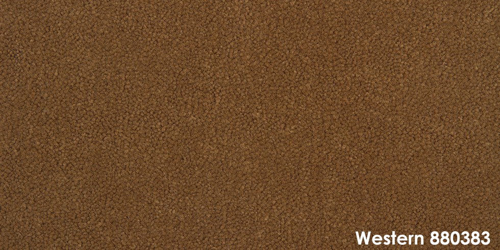 Western 880383