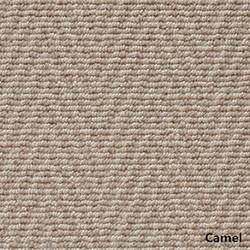 Camel_副本