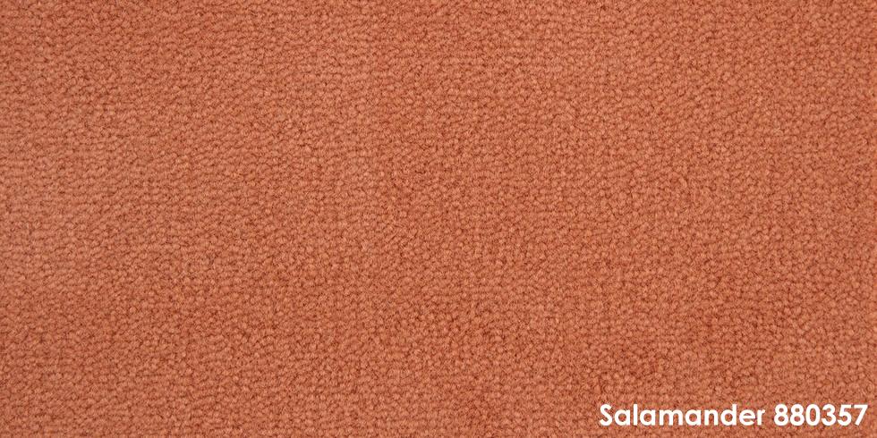 Salamander 880357