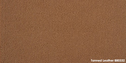 Tanned Leather 880332