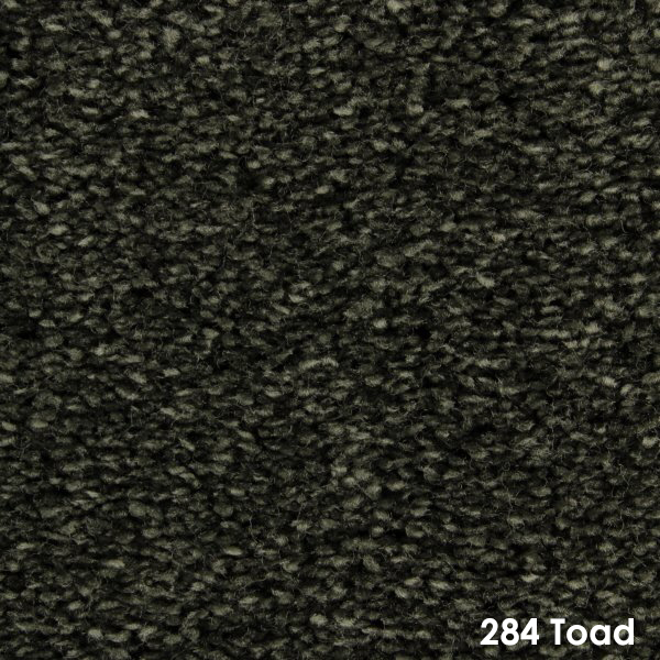284 Toad