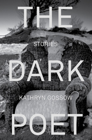 Book review: The Dark Poet by Kathryn Gossow