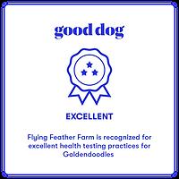 Good Dog Badge 2.png