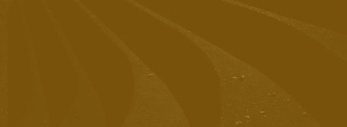 dark%20gold%20background_edited.jpg