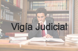 Vigia Judicial