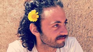 Eyal Kapulnik, Israel