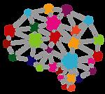 VRN Brain Logo