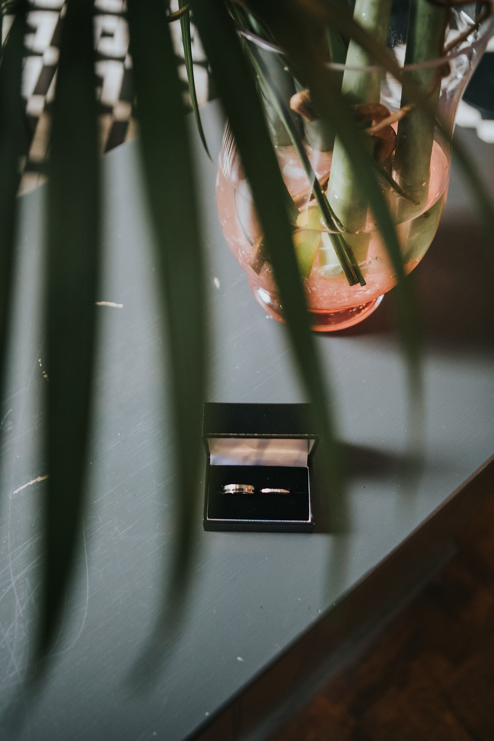 Wedding rings in the box next to a plant