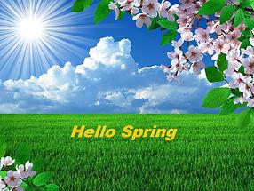 Spring Field Pic.jpg