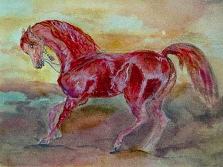 Harumi Klossowska, Cheval arabe bai _ Arabian horse, 2002, Watercolour and tempera, 23x29cm_edited.j