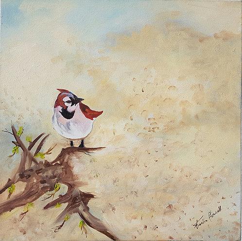L'Oiseau - N.Forsell