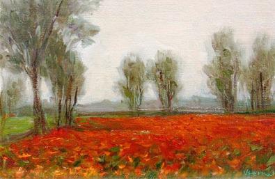 Vanya Ferrara, Champ fleuri, 16x24, Oil_Canvas_edited.jpg