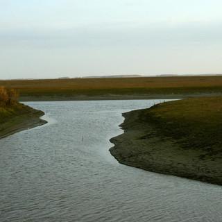 Река 1