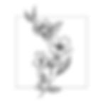 Patrizia Cova | Logo_Tavola disegno 1 co