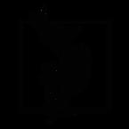 Patrizia Cova   Logo_Tavola disegno 1 co