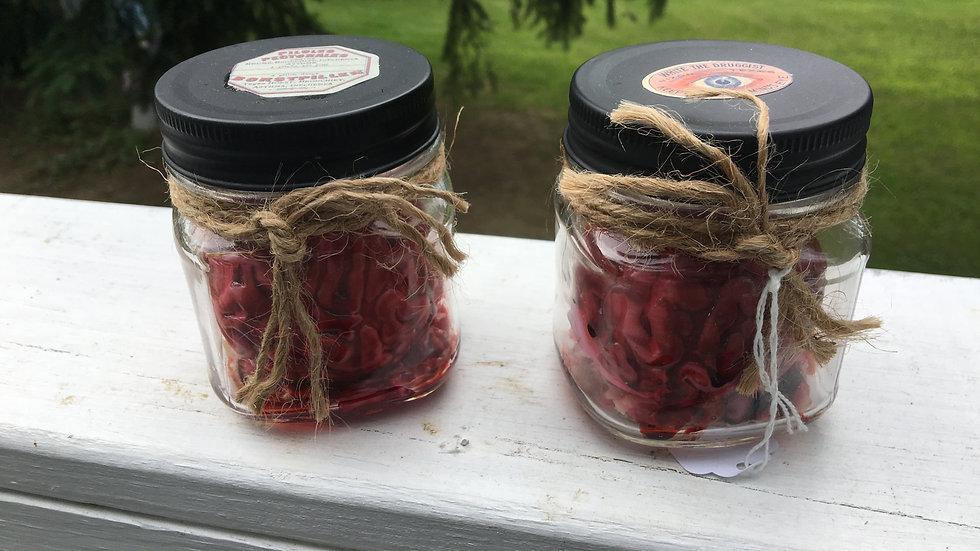 Baby Brain in Jar