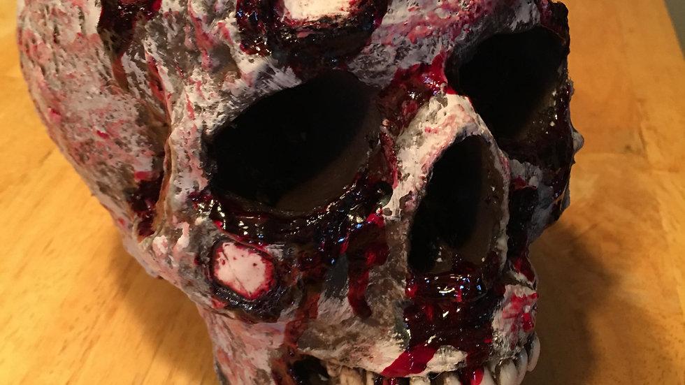 Detailed Resin Skull