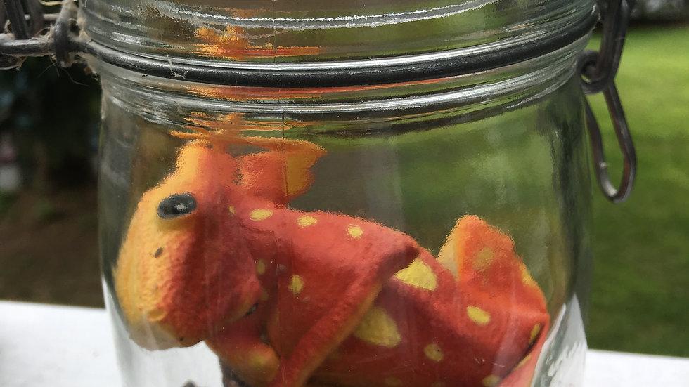 Lizard Jar