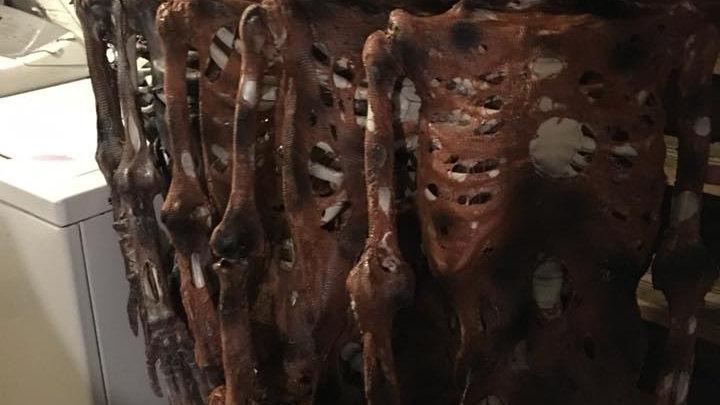Detailed Decayed Skeleton