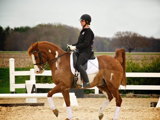 Jessica Fussner - Trainer at Grand Paradise Ranch