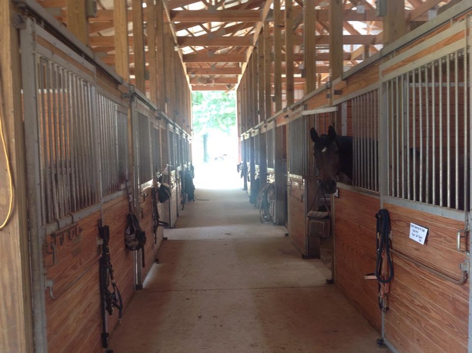Grand Paradise Ranch - Stalls