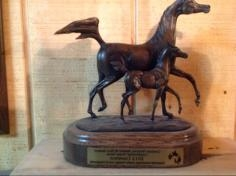 Grand Paradise Ranch - Awards