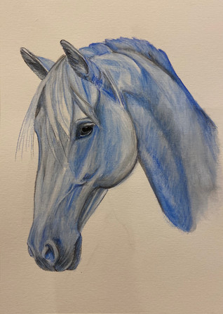Horse sketched in blue
