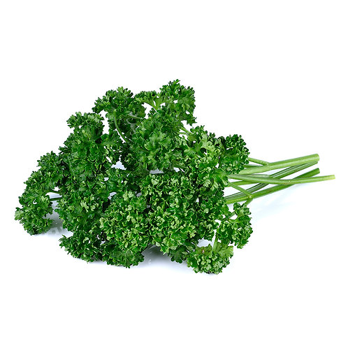 Parsley – Moss Curled