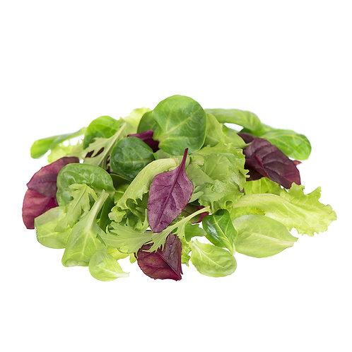 Lettuce All Star Spring Mix