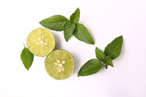 Basil- Lime