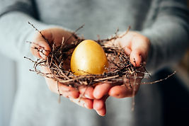 Hands holding golden egg in a small nest