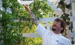 tower-garden-chef.jpg