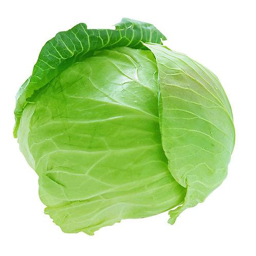 Cabbage – Farao